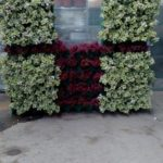 parete vegetale