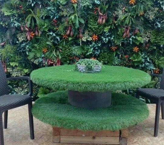 parete_vegetale